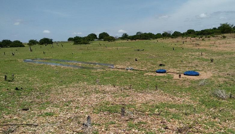 Parcelas de erosão instaladas em uma área de sobrepastejo. (Foto: Isabel Cristina)