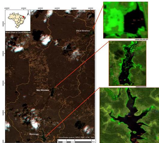 Imagens de satélite mostram a área de um açude monitorado e a presença de macrófitas e vegetação (Imagem: Christine Farias Coelho, a partir de dados obtidos pelo satélite RapidEye)
