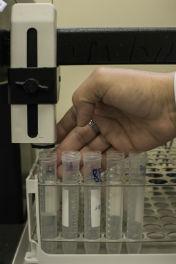Tubos com proteína purificada (Foto: Jr. Panela/UFC)