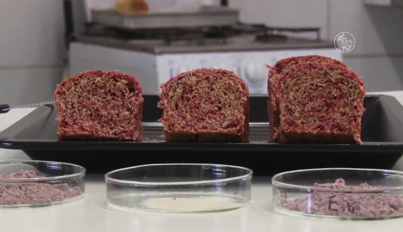 Três pães de coloração roxa lado a lado e cortados ao meio (Foto: Reprodução/UFC)