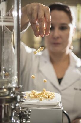 Profª Sueli despeja pedaços de fruta seca sobre uma vasilha posta em um equipamento de aluminíio (Foto: Jr. Panela/UFC)
