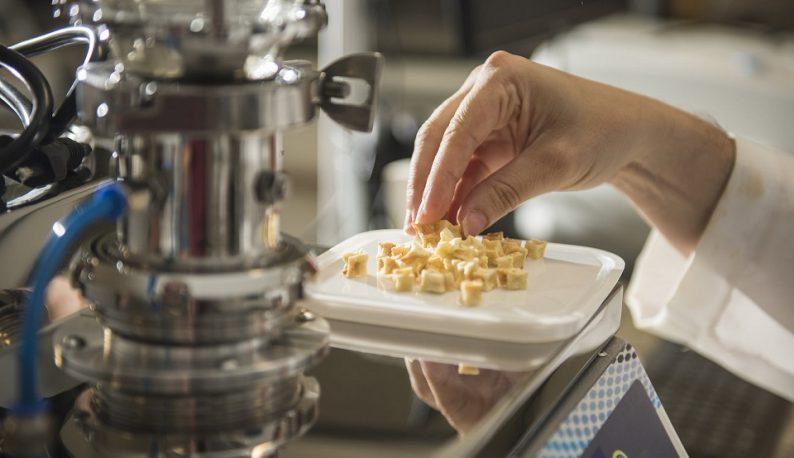 Uma mão pega pequenos pedaços de fruta seca de uma vasilha posta sobre um equipamento de laboratório (Foto: Jr. Panela/UFC)