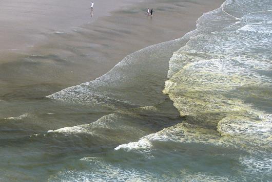 Orla da praia do Futuro, com manchas marrons (Foto: Divulgação)