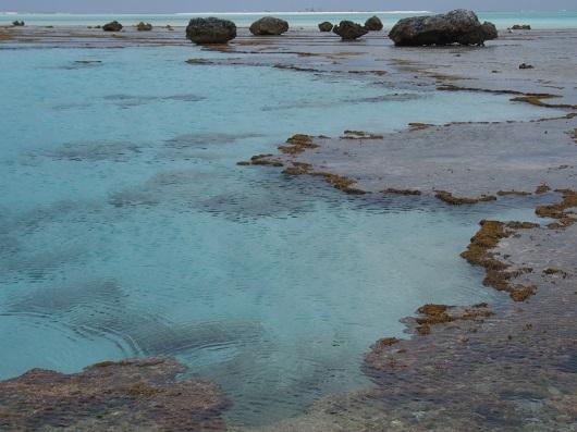Recife do Atol das Rocas durante maré baixa. Ao fundo (cerca de 3 quilômetros distante) observa-se a ilha arenosa do Cemitério (Foto: Divulgação/Marcelo Soares)