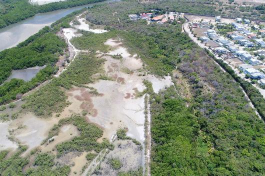 Vista aérea do manguezal do  rio Pacoti, na Região Metropolitana de Fortaleza, onde pesquisa semelhante está sendo desenvolvida (Foto: Marcus Vinicius/LABOMAR)