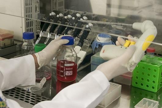 Mãos de pesquisa segurando equipamentos de laboratório e um recipiente com líquido vermelho