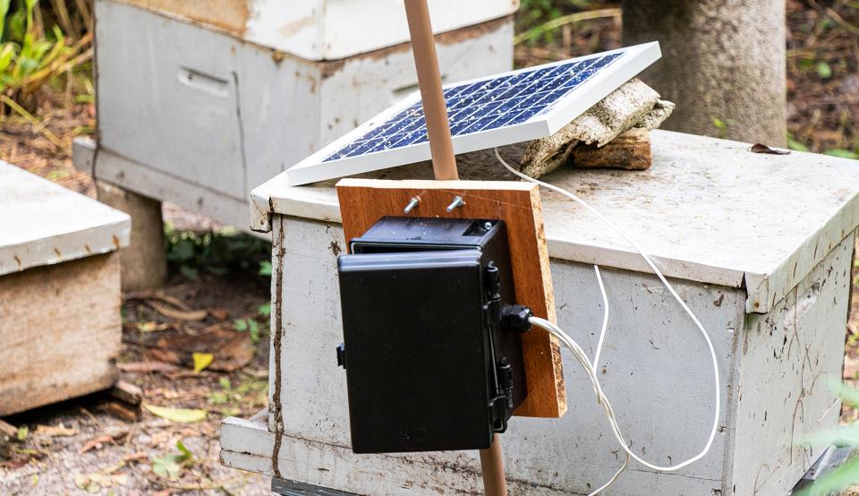Caixa de colmeia com equipamento eletrônico instalado