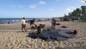 Fotografia de pessoas retirando óleo da areia da praia