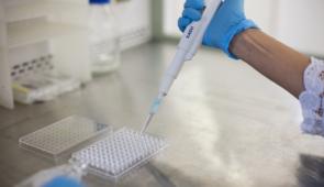 Estudo avalia papel de enzima no tratamento de câncer gástrico