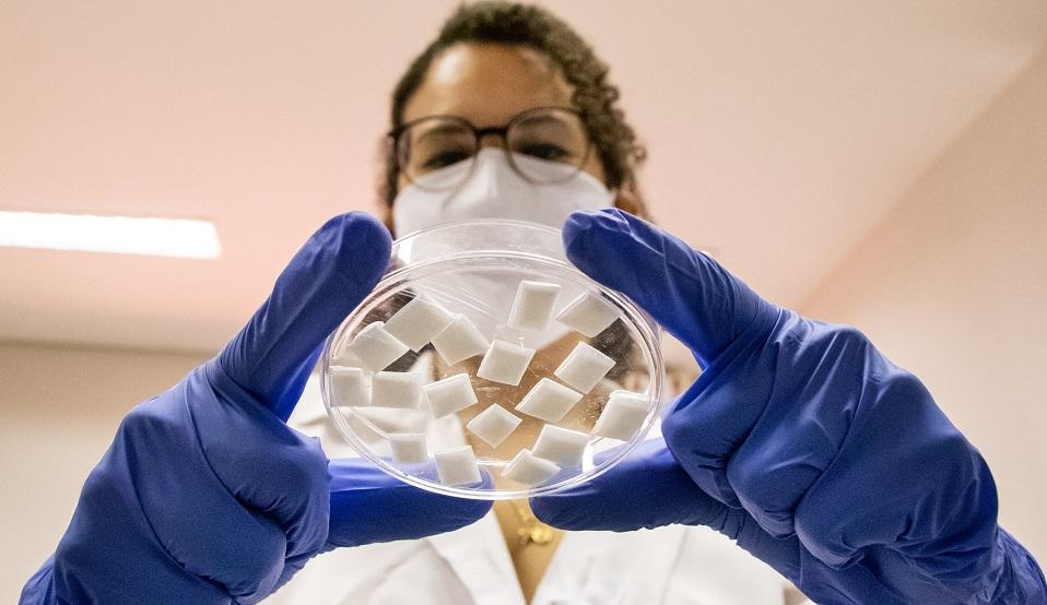 Em primeiro plano, mãos com luva seguram uma placa de petri com pequenas pastilhas brancas, os curativos ósseos, Ao fundo, desfocada, a pesquisadora Erika Luz